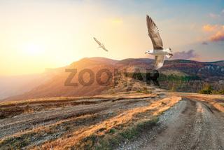 Autumn mountains of Crimea