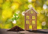 Holzhaus mit kleiner Pflanze