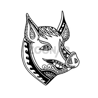 Pig Head Tribal Tattoo