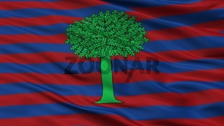 Floresta City Flag, Colombia, Boyaca Department, Closeup View