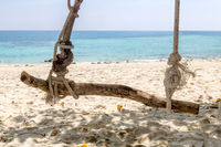Empty swing from branch hanging on a rope on the sea coast. Swing on a tropical island in the Andaman Sea.