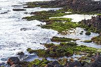 Vulkanische Küste bei Ebbe
