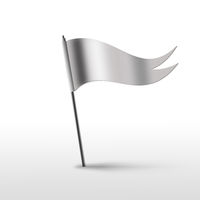 flag on a white background
