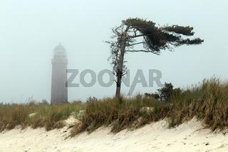 Leuchtturm 003. Fischland Darss Zingst. Deutschland