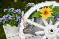 Gartendekoration altes Wagenrad aus Holz und Sonnenblume