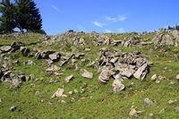 Felsenmeer in den Chiemgauer Alpen bei Reit im Winkl