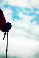 Hand and stick climber