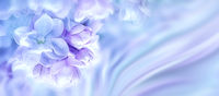 Beautiful purple lilac flowers blossom branch background. Greeting gift card template. Toned image. Nature abstract. Soft toned. Copy space