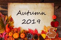 Old Paper With Autumn 2019, Colorful Autumn Decoration