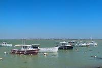 Ile de Ré - boats in harbor of Loix