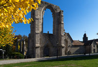 The old istercian monastery Walkenried with the museum in Lower Saxony in Germany.