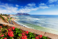 Flowers by the ocean. Lima.