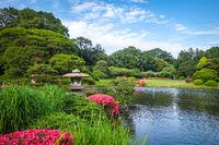 Shinjuku Gyoen garden, Tokyo, Japan
