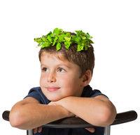 Very beautiful boy in a carnival wearing a crown