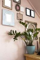 collection of various blank black frames on wall with modern decoration, green plant in a lovely home retro design