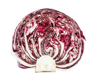 cross-section of fruit of red radicchio isolated