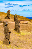 Moai at Rano Raraku on Easter Island