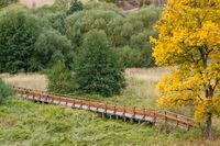 Wandern im Harz Herbstimpressionen. Frau mit 2 Kindern