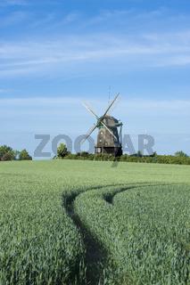 Farver Mühle bei Wangels