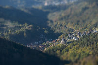 Aerial View Black Forest