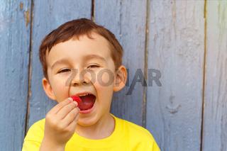 Kind kleiner Junge isst Himbeere Sommer Himbeeren essen Textfreiraum Copyspace draußen