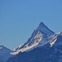 Mount Finsteraarhorn. View from Mount Niederhorn. Mountain in the Bernese Oberland.