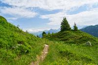 Pfad oder Weg in den Bergen der Alpen