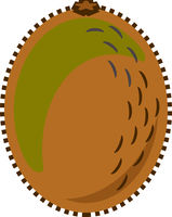 Kiwi Fruit Vector Isolated