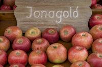 Aepfel (Malus), Sorte Jonagold