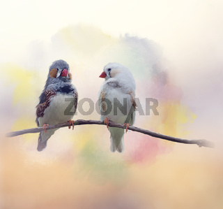 Pair of chestnut-eared finches watercolor