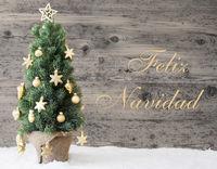 Golden Decorated Tree, Feliz Navidad Means Merry Christmas