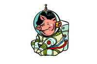 Pig astronaut character. Chinese new year of the pig