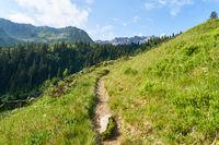 Wanderweg in den französischen Alpen im Sommer