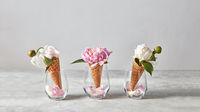 Delicate pink and white peony flowers in a wafer cone with petals in a glasses, standing on a gray stone table.