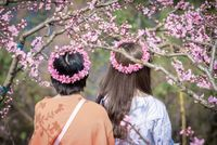 Two chinese girls with flower crown among peach blossom trees