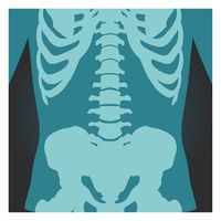 X-ray shot of spinal column, pelvis and rib cage, human body bones, radiography, vector illustration.