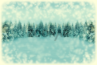 White Christmas greeting card background. Snowfall forest landscape with copy space. Winter landscape with fir trees covered with snow. Soft vintage toned