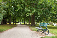 Wooden park bench under oak trees