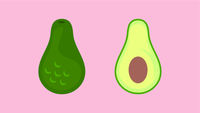 Avocado Fruit Banner Vector