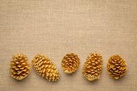 pine cones on burlap canvas