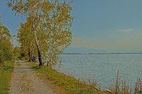 Rheindelta bei Fussach am Bodensee, Österreich