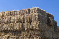 Stack of straw bales against a blue sky