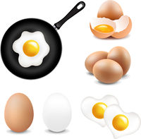 Big Eggs Collection White Background