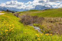 Alpine meadows and mountain stream on the Alpe di Siusi