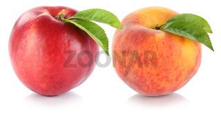 Nektarine und Pfirsich Frucht Früchte frisch Obst Freisteller freigestellt isoliert