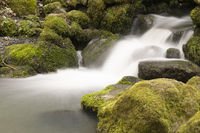 Flowing motion of Waterfall