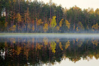 Rich range of colors of autumn forest on shore of quiet foggy lake