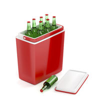 Cooling box with beer bottles