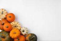 Pumpkins on white background