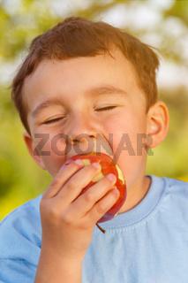Kind kleiner Junge isst Apfel Frucht essen draußen Hochformat Frühling